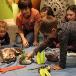 build a habitat - kids only (7)